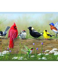 Clarence Green Songbird Menagerie Portrait Border by
