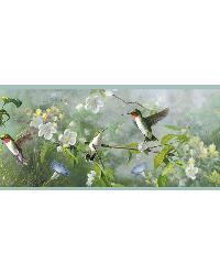 Ruby Green Hummingbird Garden Border by