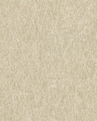 Neutrals Laval by