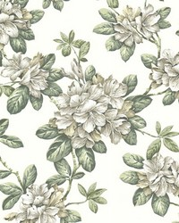 Bree Ivory Lily Trail by  Brewster Wallcovering