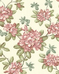 Bree Rose Lily Trail by  Brewster Wallcovering