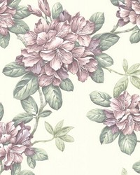 Bree Blush Lily Trail by  Brewster Wallcovering