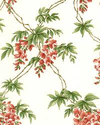 Annabelle Red Floral Toile Wallpaper by  Brewster Wallcovering