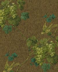 Napa Valley Brown Grape Toile Wallpaper by  Brewster Wallcovering