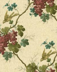 Napa Valley Merlot Grape Toile Wallpaper by  Brewster Wallcovering