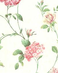 Glenmont Pink Floral Trail Wallpaper by  Brewster Wallcovering