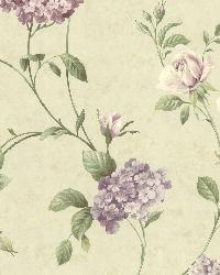 Glenmont Purple Floral Trail Wallpaper by  Brewster Wallcovering