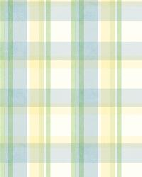 Yellow Sunday Plaid by  Brewster Wallcovering