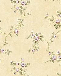 Cream Country Rose Vine by  Brewster Wallcovering