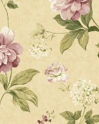 Beige Peony by  Brewster Wallcovering