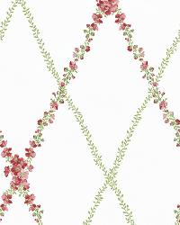 Off-White Peony Trellis by  Brewster Wallcovering