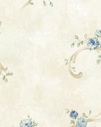 White Tearose Acanthus by