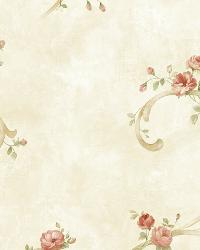 Cream Tearose Acanthus by  Brewster Wallcovering