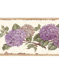 Purple Hydrangea Border by
