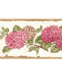 Red Hydrangea Border by