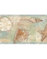 Brown Sea Shells  Border by