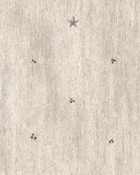 Bryndle Grey Barnstar  Sprigs by  Brewster Wallcovering