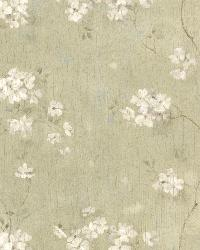 Dixie Green Floral Trail by  Brewster Wallcovering