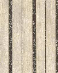 Parker Chocolate Wood Straightipe by  Brewster Wallcovering