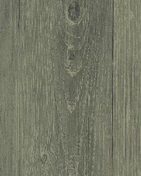 Mapleton Sage Faux Wood Texture by  Brewster Wallcovering