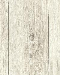 Mapleton Beach Faux Wood Texture by  Brewster Wallcovering