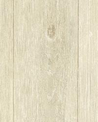 Mapleton Sand Faux Wood Texture by  Brewster Wallcovering