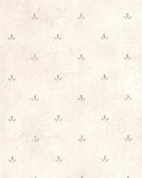 Josie Green Paw Print Texture by  Brewster Wallcovering