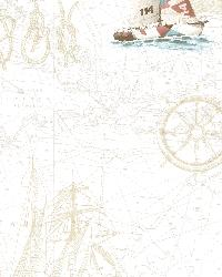 Flagler Salmon Waters Edge Map by  Brewster Wallcovering