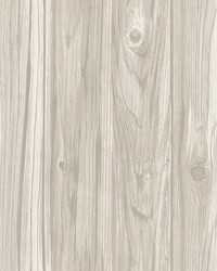 Paneling Grey Wide Plank Wallpaper by
