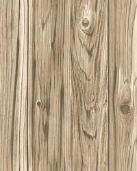 Paneling Brown Wide Plank Wallpaper by