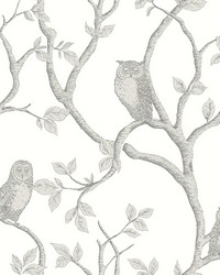 Enchanted Forest Grey Owl  Tree Wallpaper by
