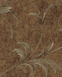 Brown Ogee Acanthus Scroll by