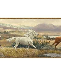 Swift Sand Open Range Horses Portrait Border by  Brewster Wallcovering