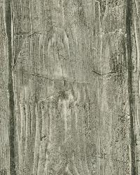 Rodeo Grey Outhouse Wood Wall Wallpaper by  Brewster Wallcovering