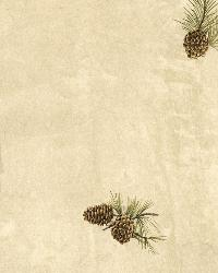 Jensen Cream Pinecone Toss Wallpaper by  Brewster Wallcovering