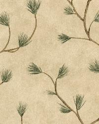 Cynthar Sand Pine Branch Trail Wallpaper by  Brewster Wallcovering
