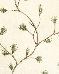 Cynthar Cream Pine Branch Trail Wallpaper by  Brewster Wallcovering