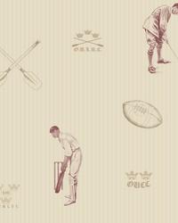 Full Blue Maroon Sports Wallpaper by