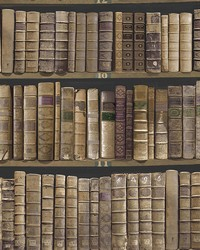 Trinity Library Brown Book Wallpaper by