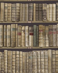 Trinity Library Green Book Wallpaper by