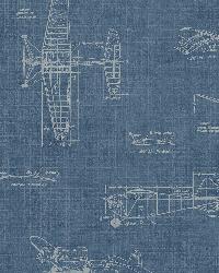 Douglas Blue Vintage Planes by