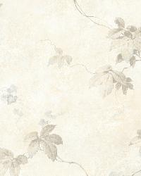 Trebah Grey Virginia Creeper Trail by  Brewster Wallcovering