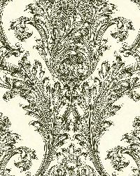 Black Archer Acanthus by  Brewster Wallcovering