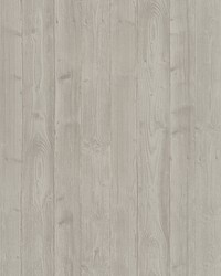 Talbot Beige Wood Wallpaper by