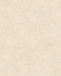 Neutrals Colorwash Suede by  Brewster Wallcovering