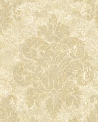 Cream Dreamy Damask by  Brewster Wallcovering