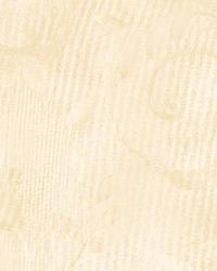 White Ashlyn by  Brewster Wallcovering