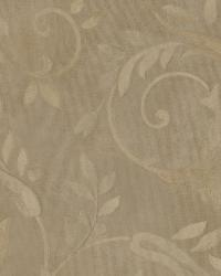 Brown Ashlyn by  Brewster Wallcovering