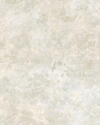 Grey Safe Harbor Marble by  Brewster Wallcovering
