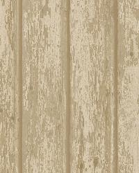 Neutral Weathered Clapboards by  Brewster Wallcovering